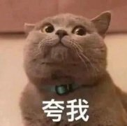日本语言学校实地走访: